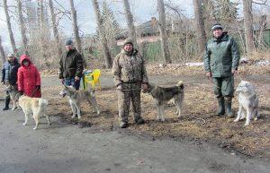 Ринг кобелей младшей возрастной группы - слева направо - С.Н.Кочурин, Г.В.Мезенин и М.Лагутин со своими питомцами.